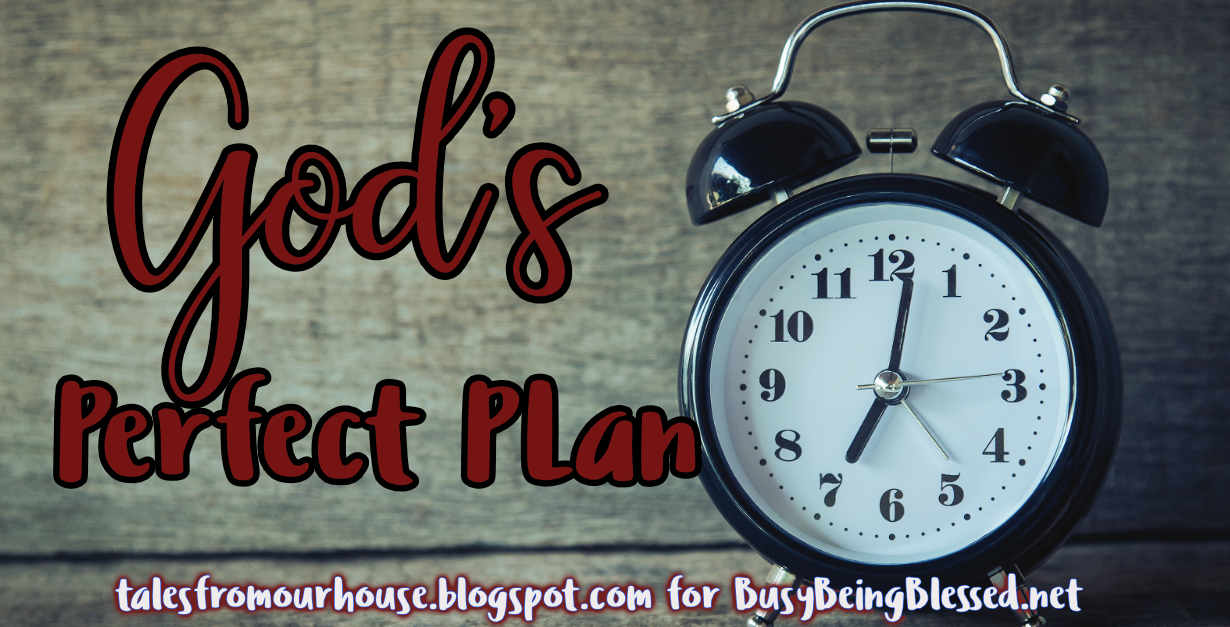 God's Perfect Plan