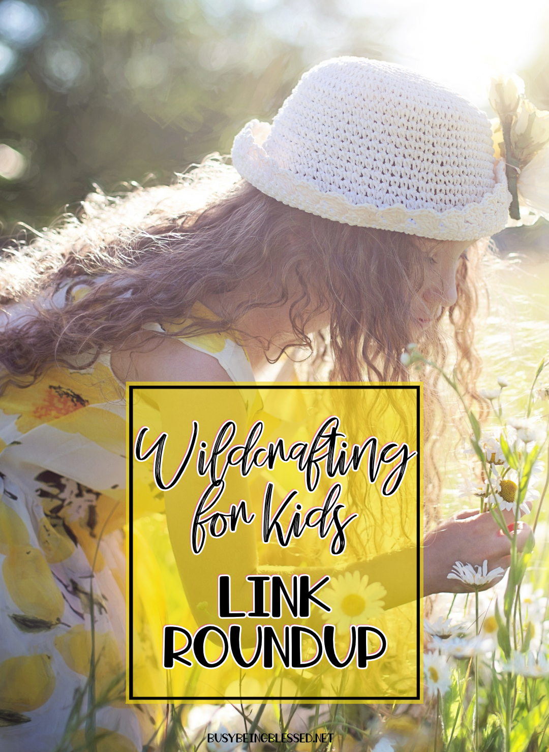 Wildcrafting for Kids {Link Roundup}